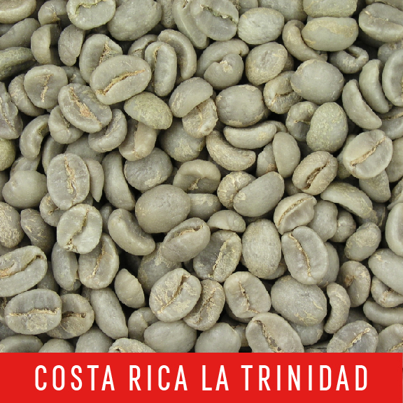 Green Coffee Beans: Costa Rica La Trinidad - 1 LB